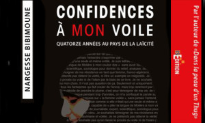 Confidences-a-mon-voile